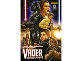 STAR WARS: DARTH VADER: VADER DOWN